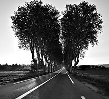 Road To My Broken Heart by Luis Ferreiro
