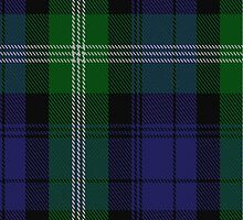 00440 Baillie of Polkemment Tartan  by Detnecs2013