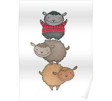 three cute sheep Poster