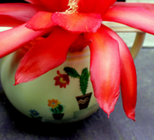 Red Cactus Flowers, Top Step Sticker