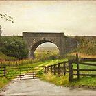 Country Road - Aviemore - Scotland by Yannik Hay