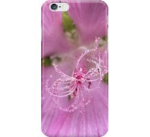 Pink Annual Mallow iPhone Case/Skin