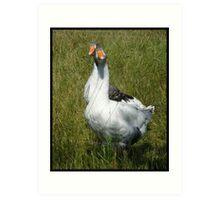 Geese Art Print