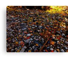 Rock'n leaves Canvas Print