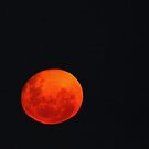 A spectacular red moon by jozi1