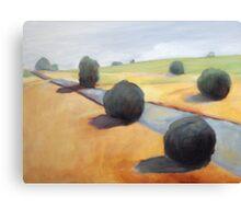 California Oaks Canvas Print