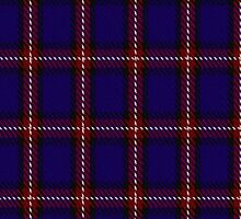 00434 Bacon Blue Tartan by Detnecs2013