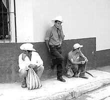 Latin Cowboys by Laura McNamara