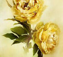 Painted Peonies by Stephanie Frey