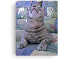 Please, Make Her STOP Taking My Picture Canvas Print