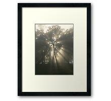 Star Of The Morn - Lansdowne Framed Print