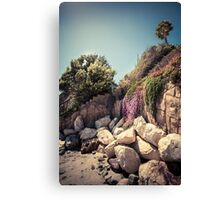 Lonely palm tree on the rocky coast Canvas Print