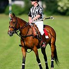 Polo Umpire by Mark Greenwood