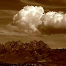 Organ Mountains by David DeWitt