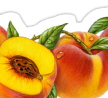 More peaches! Sticker