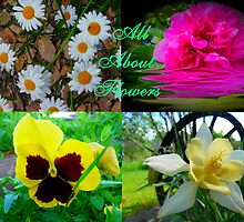 All About Flowers Logo Challange by MaeBelle