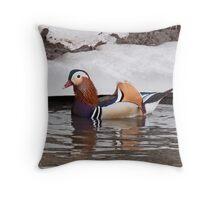 Mandarin Duck  4 Throw Pillow