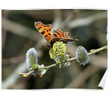 Another Comma Poster