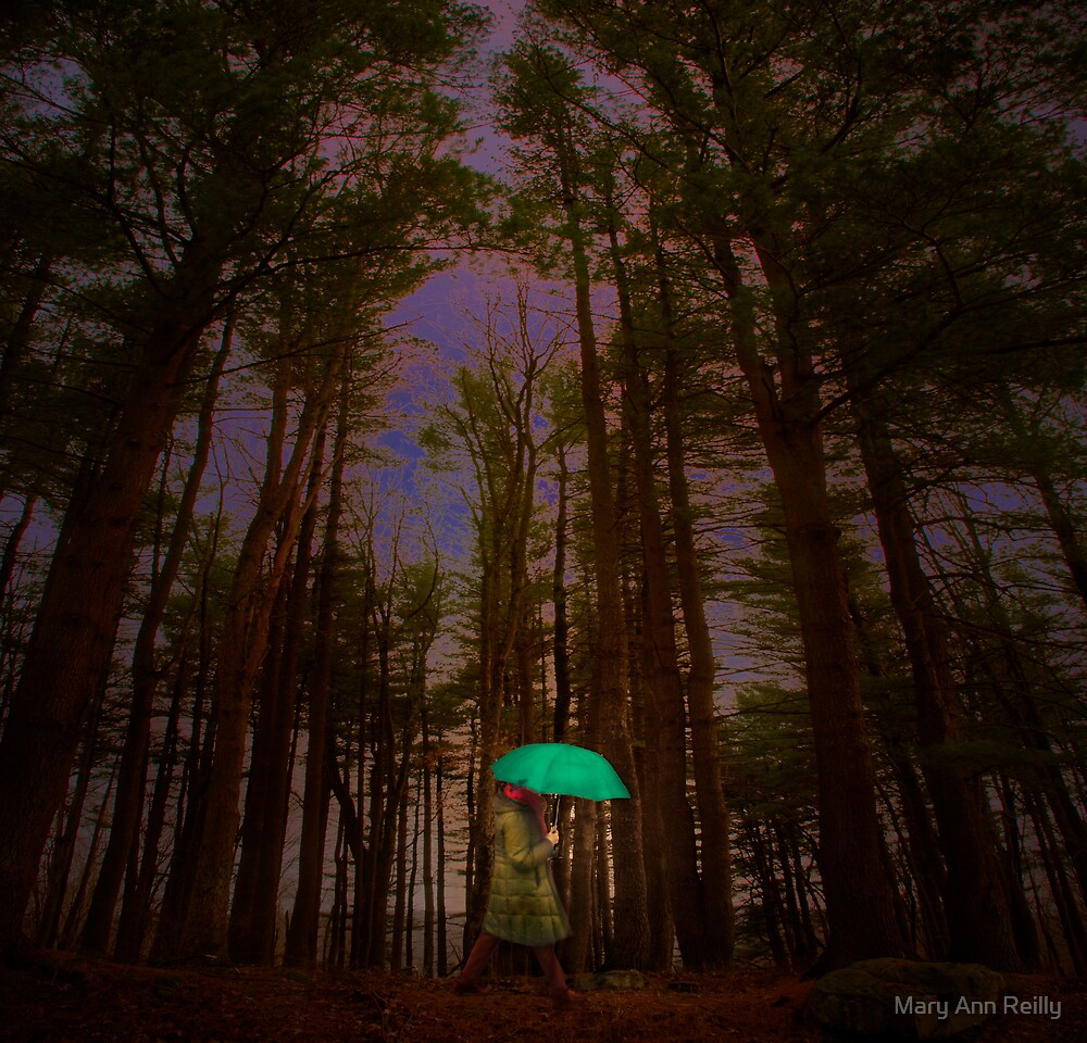 A Chance of Rain by Mary Ann Reilly