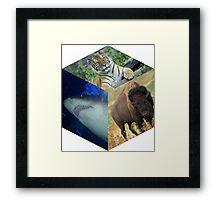 The Nature Box Framed Print