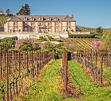 Domaine Carneros - Sonora - California - USA by TonyCrehan
