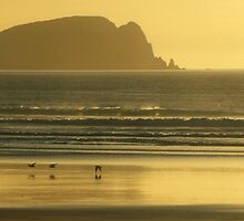 Mason Bay Early Evening Stewart Island by Les Pullen