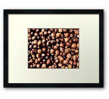 Nutmeg, George Town, Malaysia Framed Print
