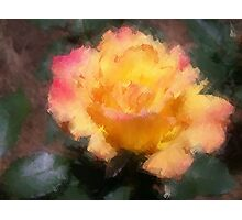 Oil Pastel Rose Photographic Print