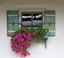 Decorated Window by Yair Karelic