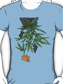 sativa and banner T-Shirt