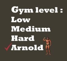 Gym level : Arnold by B-right