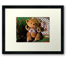 Terry Bear Framed Print