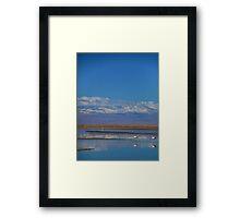 Flamingo Reflections, Salar de Atacama, Chile Framed Print