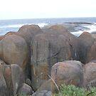 elephant rocks by Rick Playle