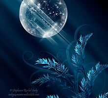 Birth Of Winter by Stephanie Rachel Seely