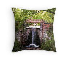 ~Water Under the Bridge~ Throw Pillow