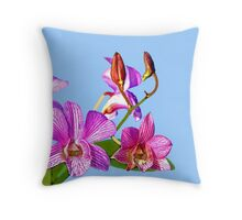 Orchid: Ortgies Cattleyopsis Throw Pillow