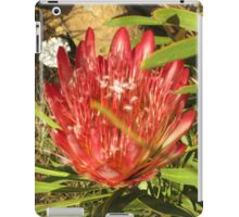 Protea flower iPad Case/Skin