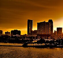 St. Petersburg, The Golden City of Florida HDR by MKWhite