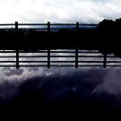 the cloud the fence (purple) by georgeisme