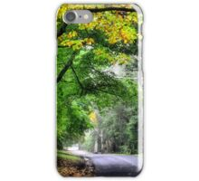 A Hint of Autumn - Mt Wilson NSW Australia iPhone Case/Skin