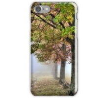 Pastel Colours of Mt Wilson NSW Australia iPhone Case/Skin