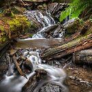 Olinda Falls by Alex Stojan