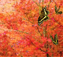 To Fly In Perfect Harmony by Hal Smith