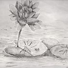 Water Lilly by PamelaMeredith