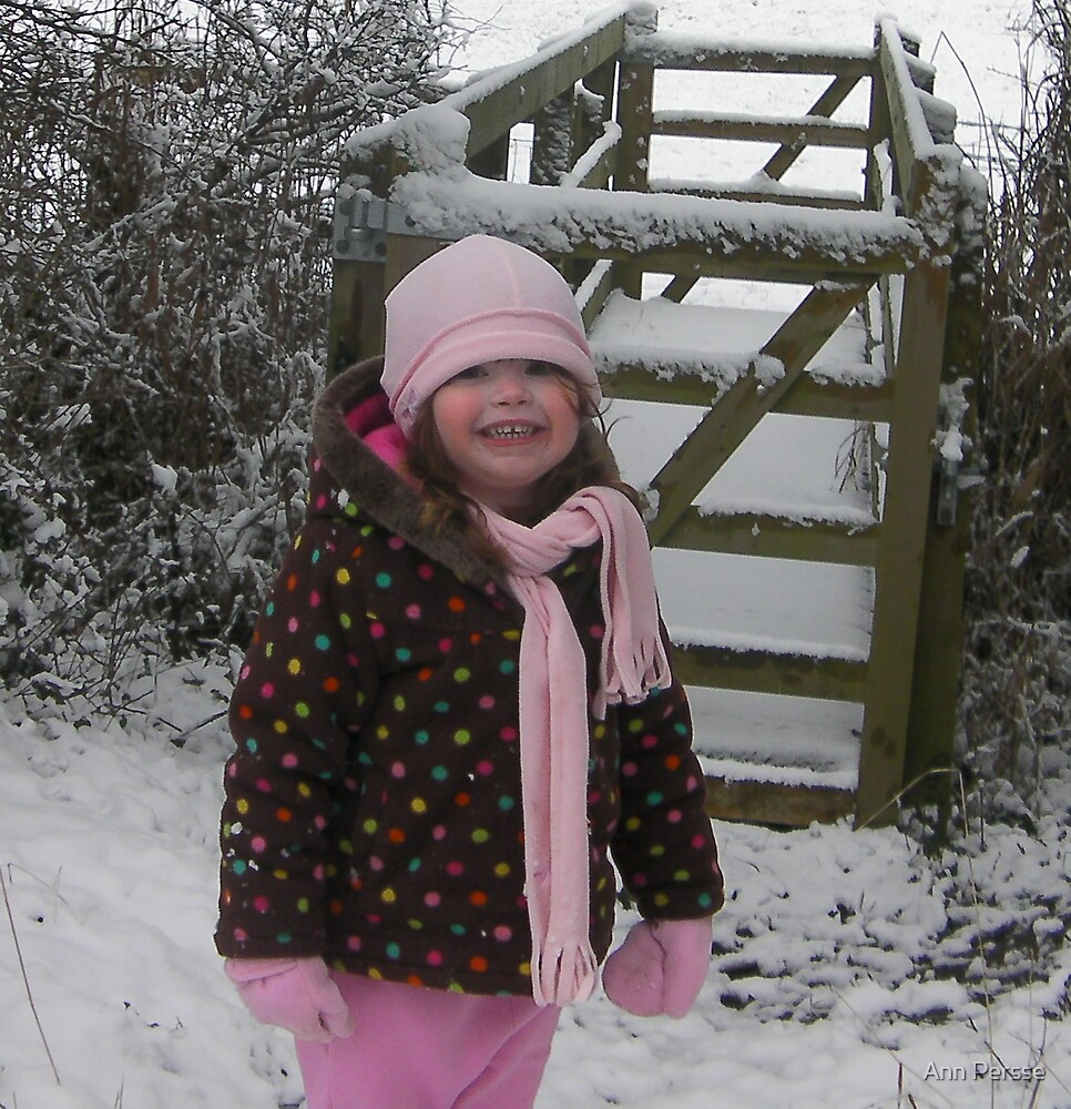 Up The Lane in the Snow by Ann Persse