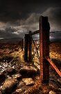 Gate by David Robinson