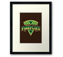 Serenity Valley Fireflies Framed Print