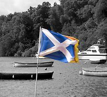 Saltire & Lion Rampant - Selective Colouring by Vagelis Georgariou