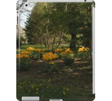 Cleveland Greenhouse 43 iPad Case/Skin
